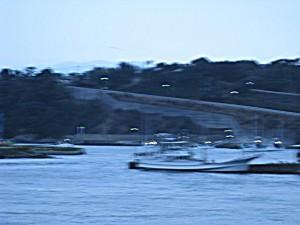 明け方の太地港の様子。